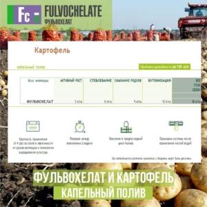 Фульвохелат и картофель.